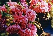 Florals / by Jennifer Seery
