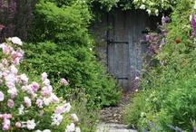 Secret Garden / by Jennifer Seery