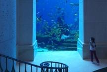 The Atlantis Resorts