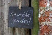 Gardens / by Veronica Gallo