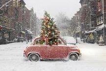 i reeaally love christmas. / by Olivia Long