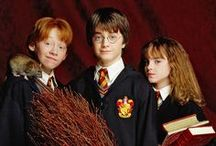 ~ Harry ⚡ Potter Movies/Books / everything about the books and movies. / by ♀♀Tracy VanSyckle Garrett ♪♫