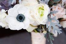 FLOWERS / by Zélia Zoé