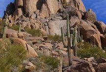 """We Are Arizona...!"" / by Jo Gooding"