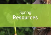 Spring / #Spring resources for #EYFS #KS1 and #KS2 from the trusted home of thousands of lovely unique  #teaching #resources for EYFS, KS1, KS2, home educators,childminders, nurseries and more. Ideas, crafts, displays, lesson plans for you to use at home or in the classroom with your children.