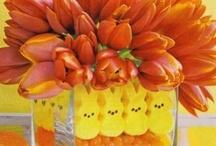 Easter / by Beverly Pekkala