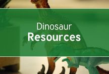 Dinosaurs / Lots and lots of dinosaur resources, crafts, lesson ideas and activities for you to use with your children at home or in school! ROAR!