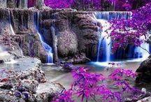 Colour Splash Photography