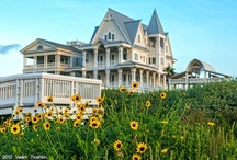 Naturally Galveston /  Galveston's temperate weather generally allows visitors to enjoy the beautiful outdoors year-round. The Island offers wonderful Gulf beaches, golf, fishing, birding, and volleyball.