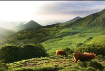 Rendez-vous en Auvergne