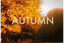 "Autumn / ""Life starts all over again when it gets crisp in the fall."" - F. Scott Fitzgerald / by Chelsea Ann"