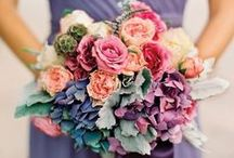 Hydrangea Trends / One of our favourite flowers - so pretty and versatile - a fabulous wedding petal!