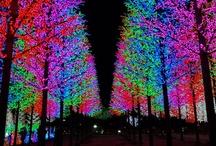 Christmas Around the World / by Sara Jean-Paul