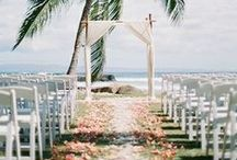 Petal Aisles / Dreaming of walking down the aisle..... Here are some inspirational images to help you create the perfect place to say your vows.