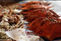 Crab Recipes / Recipes using blue crab