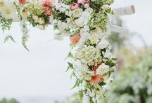 Wedding Detail Inspiration / by Carly Bish - Seattle & Destination Wedding Photographer