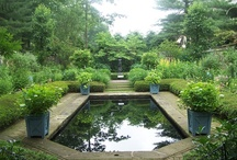 gardens that inspire / by Lill