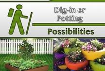 Dig-in or Potting [Gardening] / #Gardens, #Landscaping