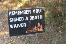 Tough Mudder 2014 / by LC
