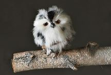 WHOO Loves Owls / Whoo knew it, I love owls! / by Kylie Cornish