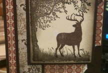Masculine Stampin Up Cards / by Penny Graves