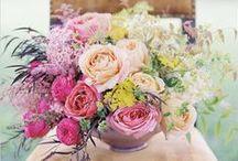 Centerpieces and Flower Arrangements