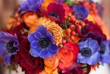 Bouquet Inspiration / by Liz Green