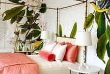 Bedrooms / Bold, Modern, colorful, playful, mid mod.