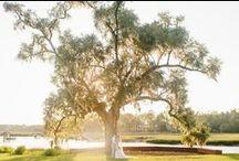 Dunes West Weddings / Charleston weddings held at Dunes West Golf Club in Mt. Pleasant, SC.