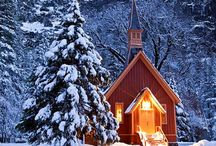 christmas / peace on earth will come and stay,when we live Christmas everyday.  helen rice steiner / by Cheryl Covert