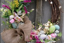 Spring is sprung and the Easter Bunny is coming!  / by Louise Houghton