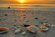 Da beach / by Pamela Hayes