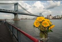 Flowers and NYC Landmarks
