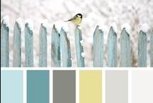 Color / by Jen Dicou
