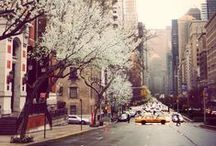 I heart New York  / My favourite place
