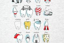 Dental Life / Dental Assisting. Dental Hygiene.