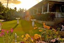 The Restaurant - Plantation Gardens / A look into the Plantation Gardens Restaurant and Bar / by Plantation Gardens Kauai