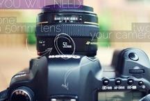 Photography & Camera Tips / by Melissa Robbins