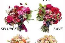 Frugal Wedding Tips / Tips to save money on the wedding and honeymoon