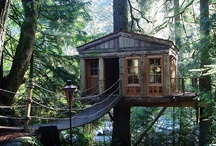 treehouses i wish i lived in / by Sharon Rz