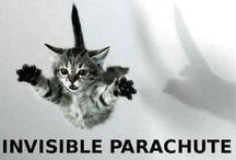 hilarious!!! / by Gail Cousineau
