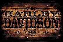 ★Harley~Davidson / by Stan & Melissa McClurg