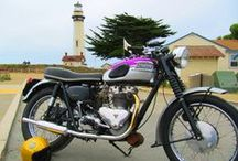 The Best of American Triumph