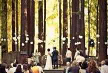 Dream Wedding / by Alexandra Jean Follmar