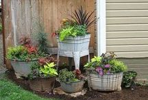Gardening / outside ideas / Gardening and outdoor ideas to make things easier...