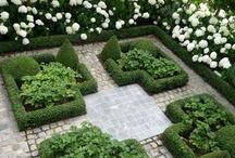 garden / by Terra Palmer
