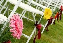 Wedding Chairs / by Wedding Flowers, Inc.