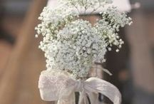 """Baby's Breath Wedding Flowers / Beautiful design ideas for bridal bouquets, corsages, boutonnieres, centerpieces and church decorations using gypsophila - aka """"baby's breath""""  . Learn how to make bridal bouquets, wrist corsages, groom boutonnieres, reception table centerpieces and church flower decorations.  Buy wholesale fresh flowers and discount florist supplies."""