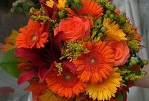 Gerbera Wedding Flowers / Beautiful ideas for weddings incorporating Gerbera Daisies.  See bridal bouquets, corsages, boutonnieres, centerpieces and church decorations.