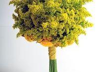 Solidego Wedding Flowers